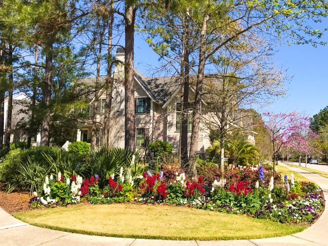Early Spring Graces Charleston